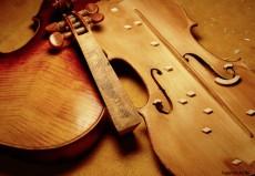 Stradivari_Holz