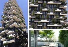 Stadtbäume auf dem Vormarsch - Symbiose von Architektur und Natur