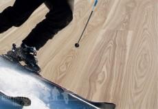 Die biegsame Esche – und wie ihr Holz zum Renn-Erfolg beitrug